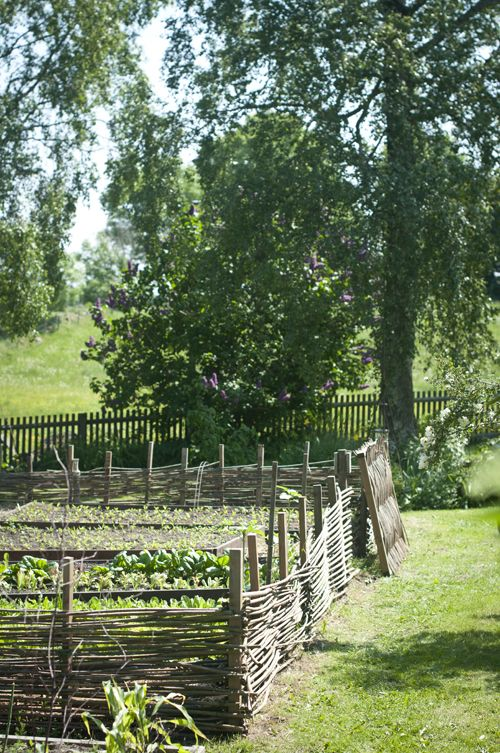 Hemlängtan: Trädgård   I love the old medieval style fences...like Cadfael's garden!