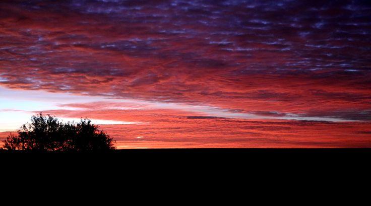 Sunrise over Cordillo Downs