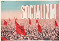 Socjalizm by Tadeusz Trepkowski