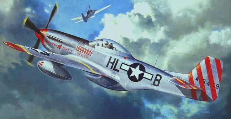 P-51D Mustang 'American Beauty' by Takayoshi Wada