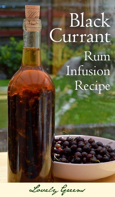 Blackcurrant Rum Infusion Recipe ~ make this easy and delicious infused liqueur with fresh and seasonal blackcurrants. When it's ready, sip it neat or use it to mix into cocktails. DELISH!
