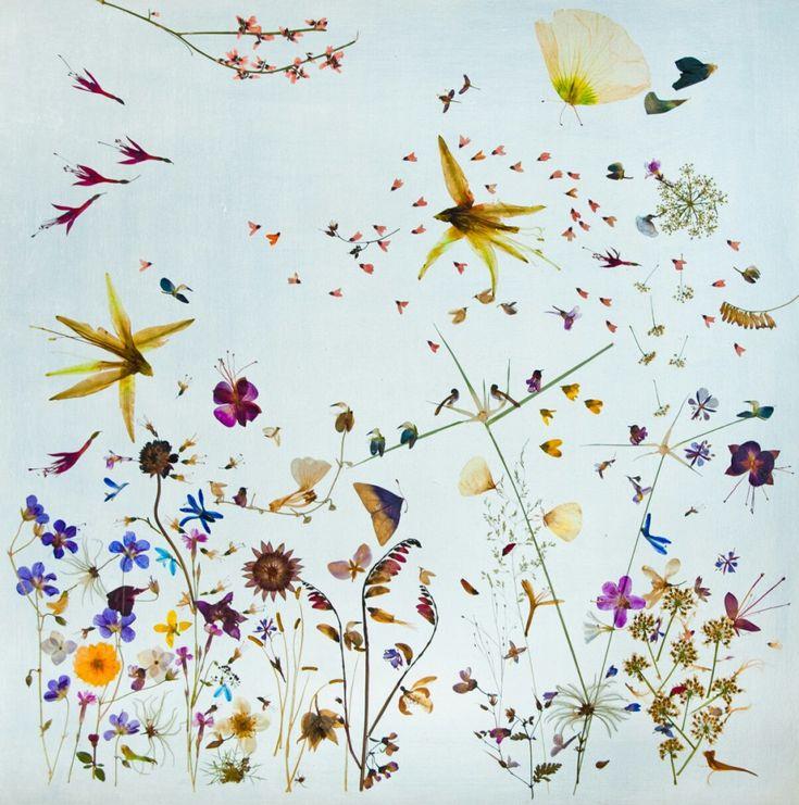 http://www.kiss-and-tell.de/flora-metaphorica/ #florametaphorica #blumen #flowers #kunst