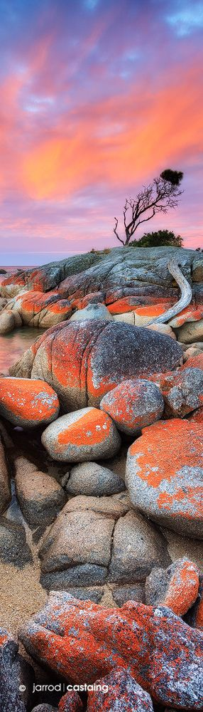 Sunset over the Bay of Fires at Binalong Bay, Tasmania, Australia by Jarrod Castaing