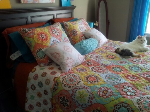 Agai My Cynthia Rowley Bedding And Kitty Bought From