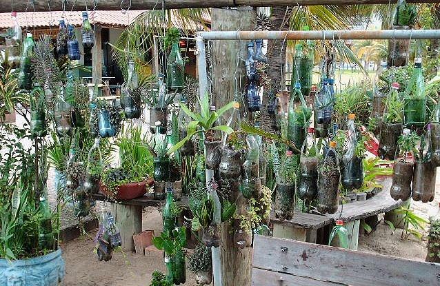 Hanging plastic bottle garden raised garden bed for Garden design using plastic bottles