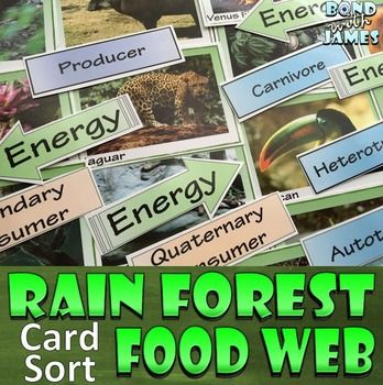Food Chain and Food Web: Bring the rainforest to your classroom! Engage your students with an introduction or review of food chains and webs with this themed manipulative activity.  Help students analyze the flow of matter and energy through trophic levels by constructing various rainforest food webs and/or food chains.