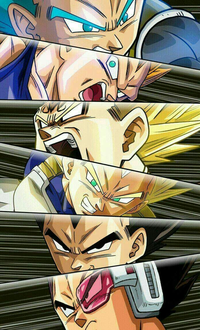 Stages of Vegeta #dbz #db #dragonball