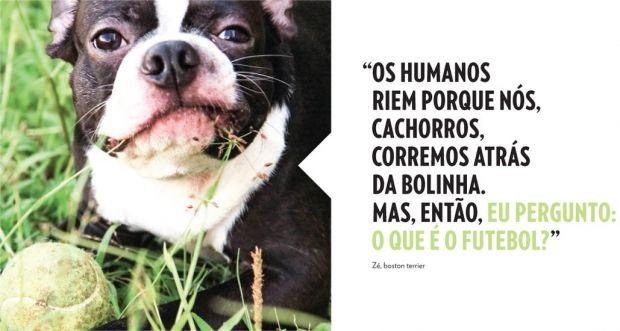 frases sobre cachorros que morreram - Pesquisa Google