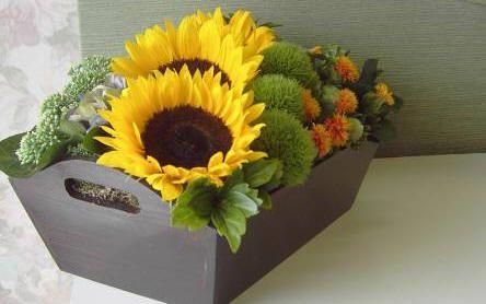 Bloemstukjes op het tuinforum van tuinadvies - bloemstukjes maken via het forum…