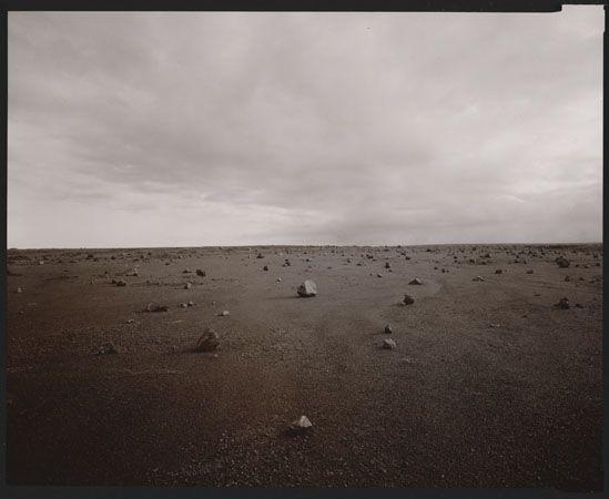 Linda Connor | Haines Gallery