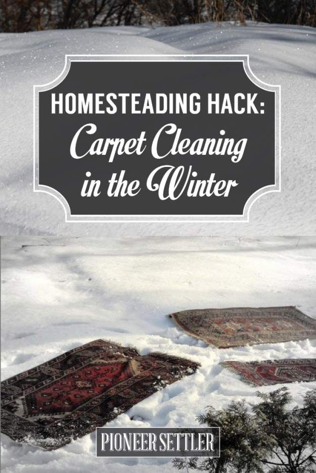 Carpet Cleaning My Secret Homesteading Hack How To Clean Carpet Carpet Cleaning Recipes Carpet Cleaning Company