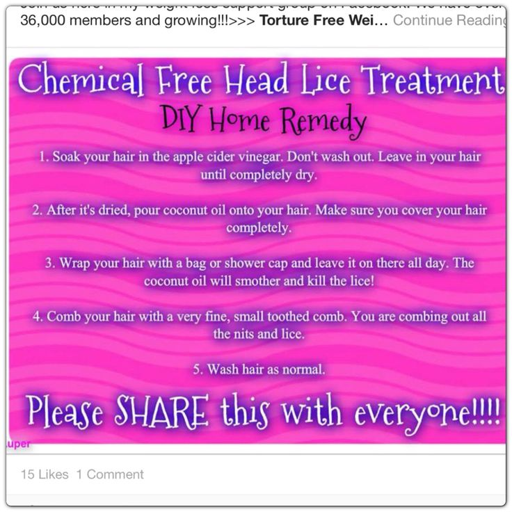 1000 Images About Lice On Pinterest The Head Mom And Natural
