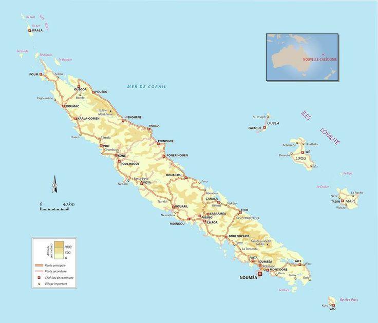 Les 25 Meilleures Id 233 Es De La Cat 233 Gorie Tonga Sur