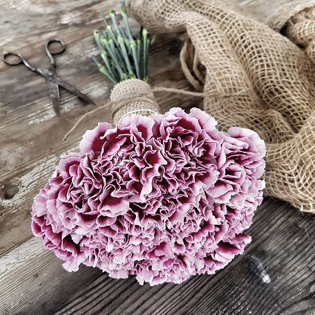 Sunday flowers are always a good idea...~•❥ #bouquet#bukett#årstidensbästa#nejlika#dianthus#vakrehjemoginteriør#interiormagasinet#fioribilden#blomster_inspo#tradgardsinspo#trädgårdsinspo#insta#flower#blommor#inspo#inspiration#flowerslovers