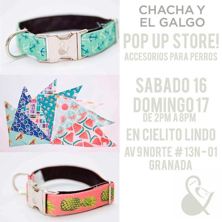 """""""Este fin de semana podrás conocer la nueva colección de accesorios de @chachayelgalgo en @cielitolindoco  Te esperamos para que parches con tu perro!"""