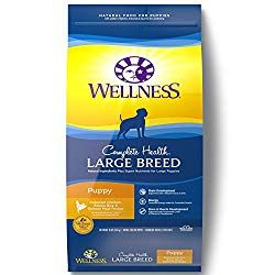Best Food For Doberman Puppy Dogs Dog Food Recipes Large Breed