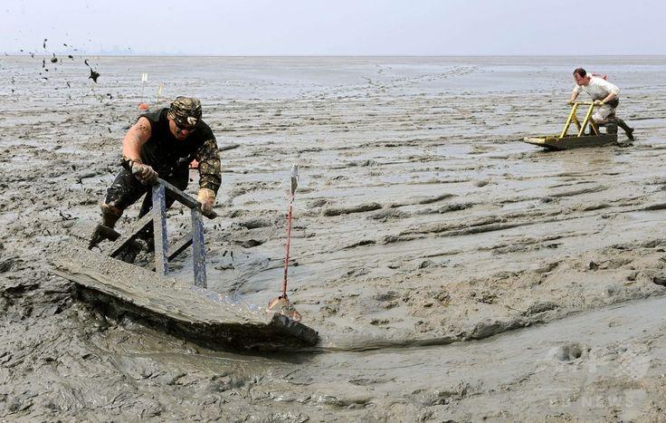 ドイツ北部Uplewardで開かれたチャリティー泥んこレース「清い仕事のための汚れたスポーツ大会」で、ワッデン海(Wadden Sea)の干潟で泥まみれになりながらそりを押す参加者たち(2014年7月20日撮影)。(c)AFP/DPA/INGO WAGNER ▼21Jul2014AFP 体は泥まみれでも心は清く、ドイツで干潟そりレース http://www.afpbb.com/articles/-/3021044 #Wadden_Sea