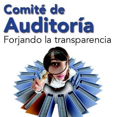 El comité de auditoría es uno de los órganos de gobierno ...