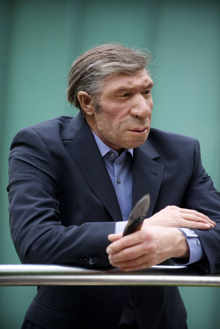 Lifelike reconstruction of a Neanderthal man in the modern world @ the Neanderthal museum, Mettmann, Germany