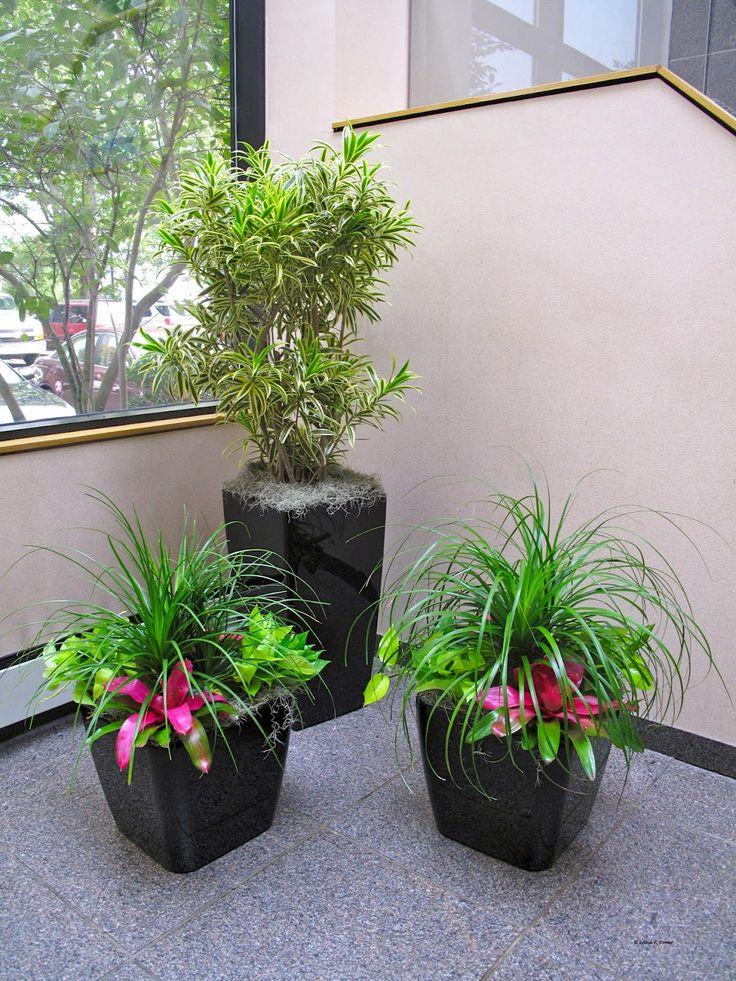 92 best Interior Plantscapes images on Pinterest | Flower pots ...