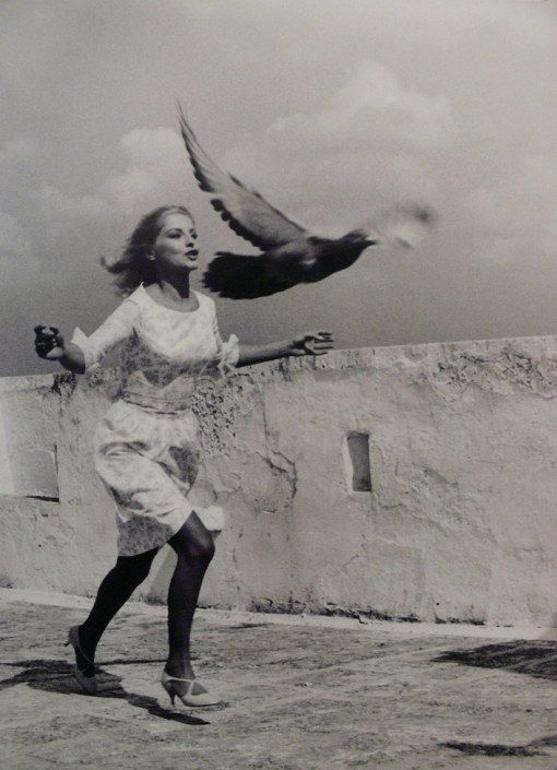 Tazio Secchiaroli, Virna Lisi, 1965 | inflight | fly | chase | run | wings | 1960s | bird | black & white