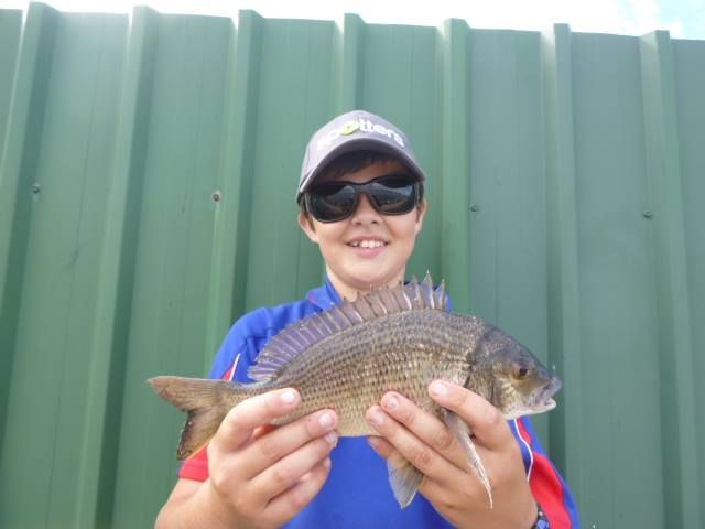 30cm bream from westlakes