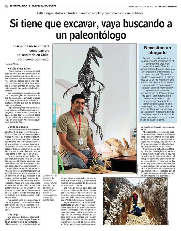 Periódicamente ustedes nos preguntan qué se necesita, o qué hay que hacer, o qué hay que estudiar, o con quién hay que hablar, o dónde hay que ir, o cuánto hay que invertir, o si en Chile se puede, si existe la carrera, si hay alguna universidad que enseñe lo necesario para convertirse en paleontólogos. Pues bien, en Las Últimas Noticias (LUN) se publica una página completa a todo color con David Rubilar Rogers, quien les dirá cómo pueden convertirse en paleontólogos.