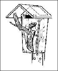 Plans For House Wren Plans For Bat House ~ Home Plan And House ...