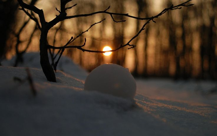 cool snowball in the sunset light