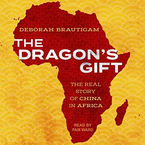 The Dragon's Gift: The Real Story of China in Africa Audible