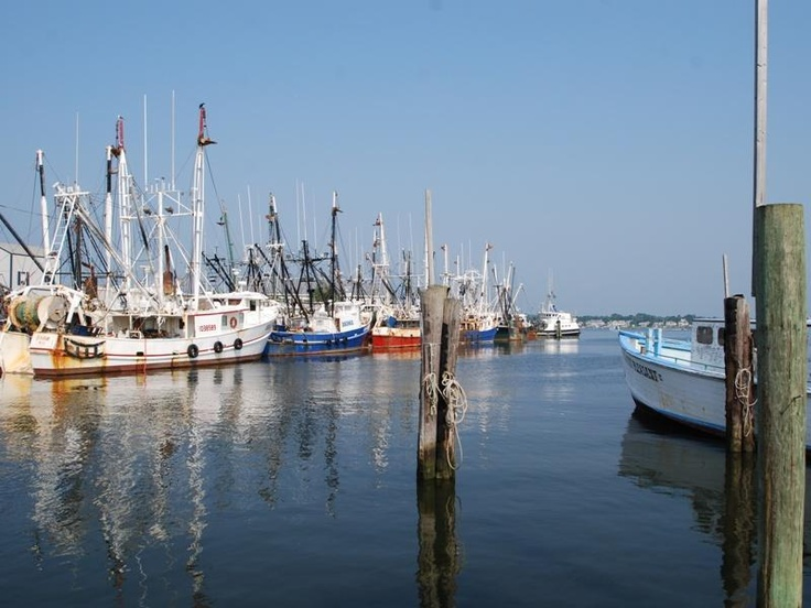 34 best point pleasant new jersey images on pinterest for Point pleasant fishing boats