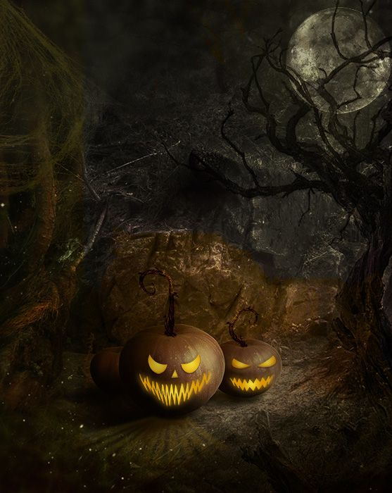 Can't find a creepy enough photo location near your home for Halloween photos? Check out this Sinister Night Printed Backdrop from Backdrop Express.