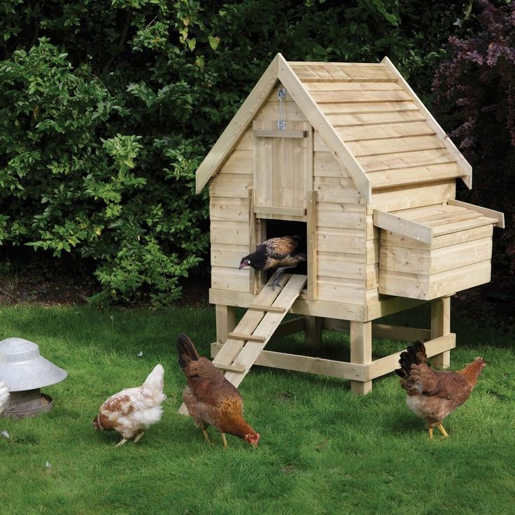 17 Best Images About Cool Chicken Coops On Pinterest
