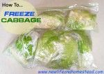 How To Freeze Cabbage  http://newlifeonahomestead.com