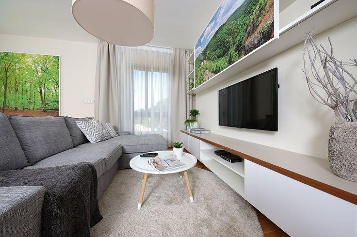 flat, tv wall, living room