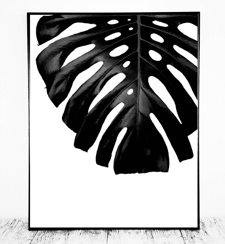Monstera Leaf Print (Black and White Art Print) for Instant Download. Beautiful Monstera Print to Update or Decorate your Office or Home Decor. Also Great for Printing on Cards, Mugs, T-shirts etc. Beautiful, Affordable & Easy; Just Print! You might also like; https://www.etsy.com/listing/5087278