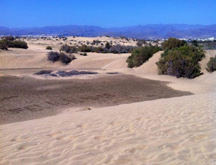 Sanddynor Maspalomas, dunes