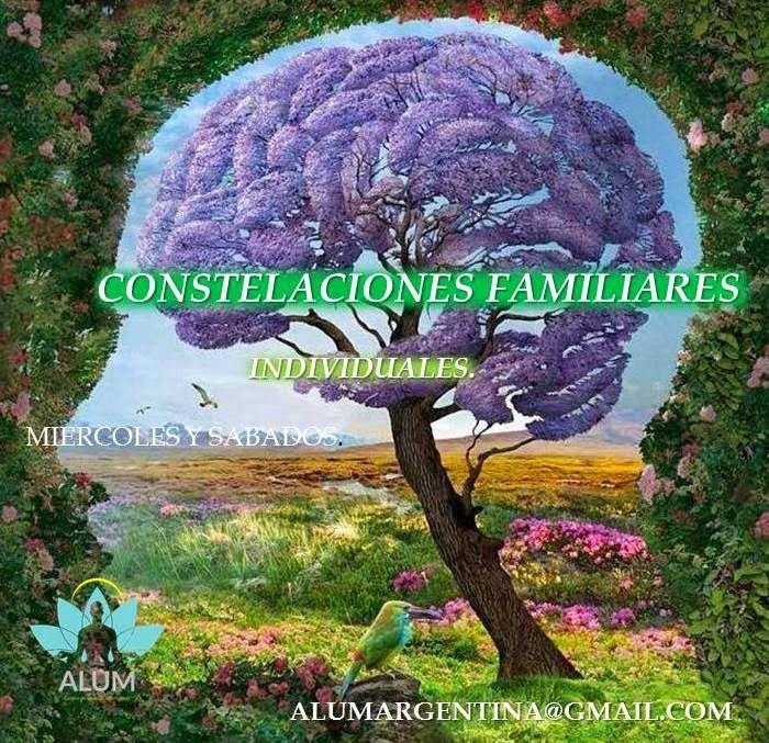 ALUM - Centro de Terapias Alternativas.: CONSTELACIONES FAMILIARES INDIVIDUALES.