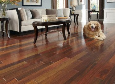 Brazilian Walnut Is Very Popular For Flooring, And You Can Be Sure It Will  Offer You Awesome Strength As A Flooring Surface As Well.