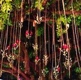 Árbol de las salchichas/Lincoln road/Miami Beach