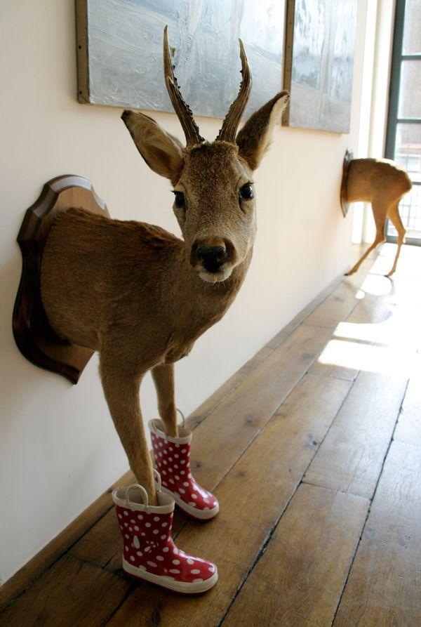 Ghyslain Bertholon - Troché chevreuil (taxidermie, caoutchouc et bois laqué - 2011) / http://www.ghyslainbertholon.com #taxidermy #art #exhibition