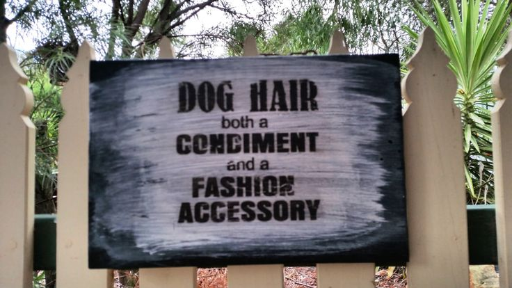 Dog lovers sign // Dog hair sign // Gift for dog lovers // Funny sign // Solid wood // Repurposed wood // I love Dogs // Pet lovers gift by BornAgainBargainsCo on Etsy