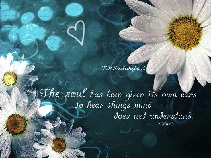 Rumi quote | RUMI Quotes | Rumi quotes, Rumi love, Rumi poem