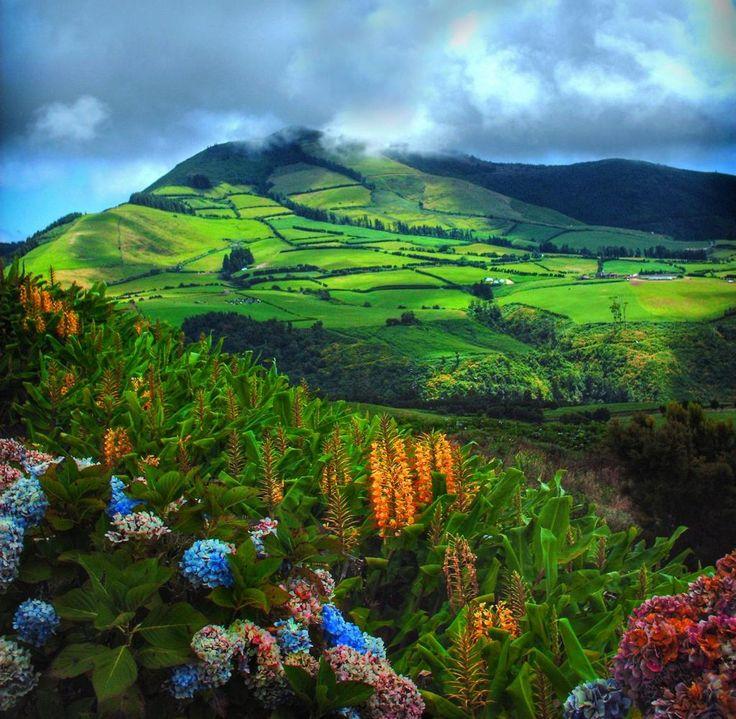 #Azoren Naturparadies: Das ist das europäische Hawaii - via WELT 12-11-2016 | Muss es ein endloser Flug bis ans andere Ende der Welt sein? Nein. Es gibt hier in Europa ein grünes, ganzjährig mildes Naturparadies, wo man dem Herbstblues bestens entkommen kann.