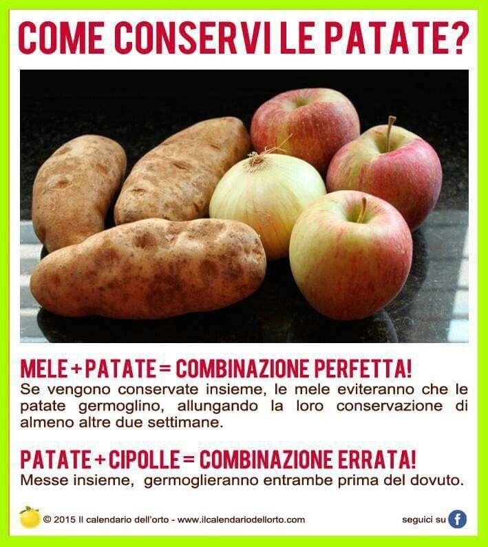 Conservare le patate