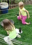 Petting zoo rentals for kid's birthday parties and events - Orange County CA rentals, party rentals - Anaheim, Laguna Beach, Riverside and surrounding areas.