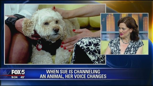 Pike says she can channel the feelings Rosanna Scotto's dog, LuLu, and Elvis Duran's dog, Max, could fee.