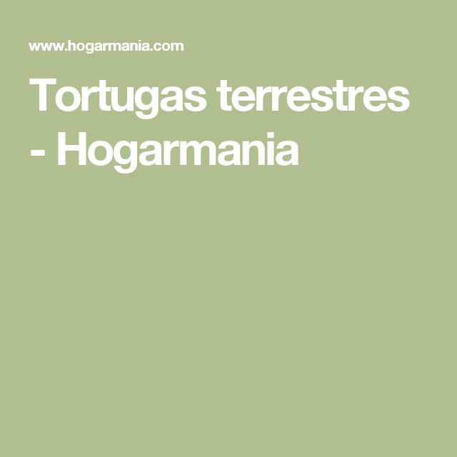 Tortugas terrestres - Hogarmania