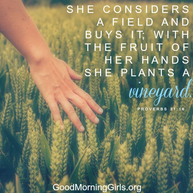 Women Living Well: Find Your Joy in God, Your Man, Your ...