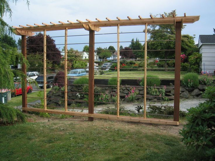 17 best ideas about hops trellis on pinterest hops plant